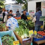 farmers-market-for-farming-final