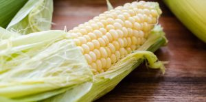 Shucking corn just out of the microwave.