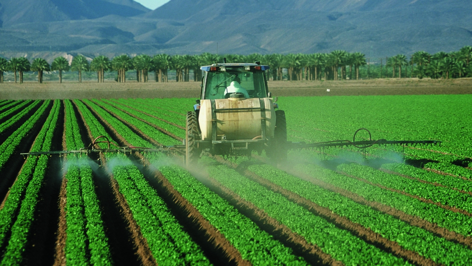 Pesticides are commonly sprayed on food crops in the U.S.